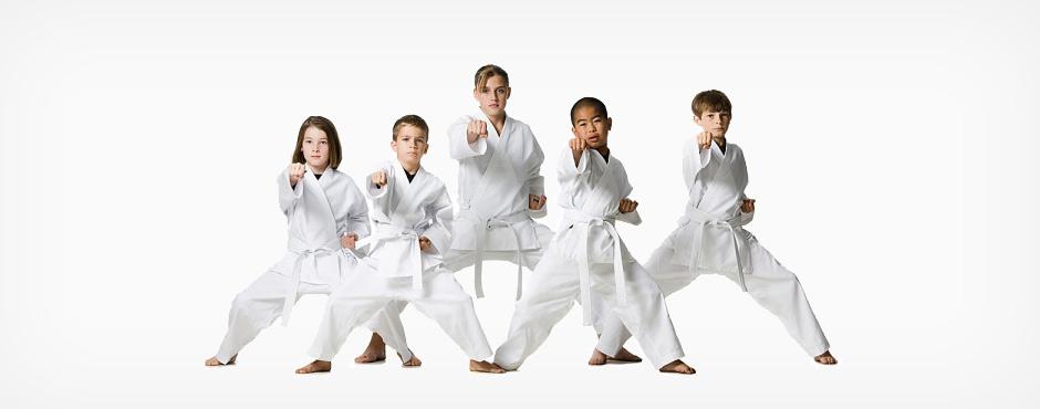 Independent Taekwondo Schools
